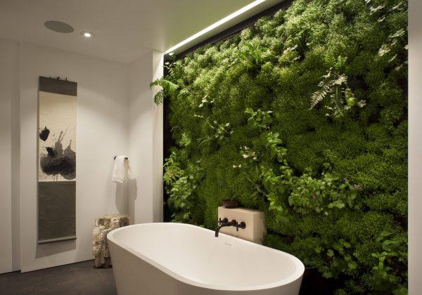 Où installer son mur végétal