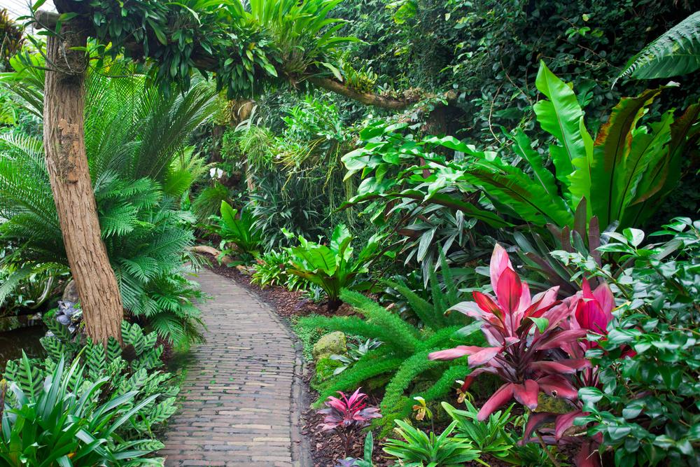 jardin prehistorique