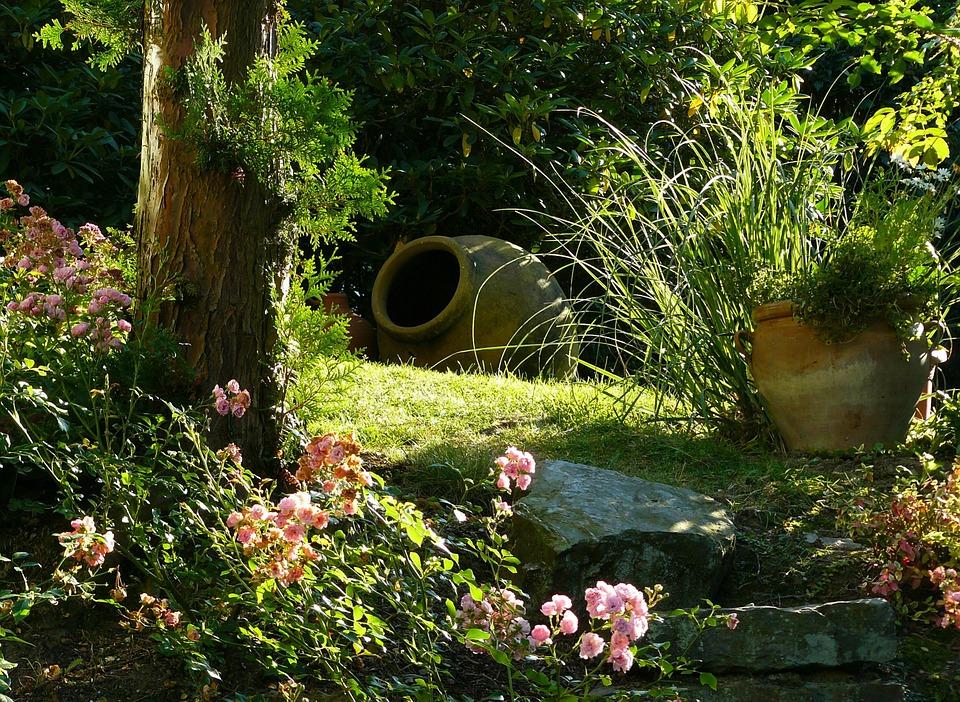 Histoire du jardin