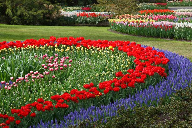 Le jardin de Versailles et son histoire