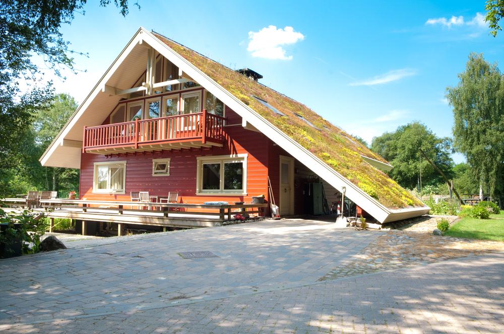 Une maison urbaine végétale