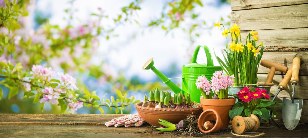 fleurir terrasse