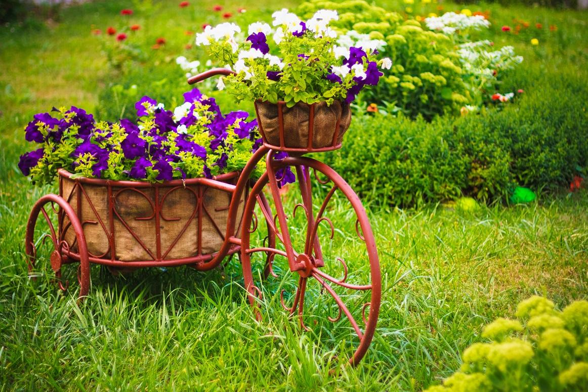 cultiver des fleurs en bacs et pots